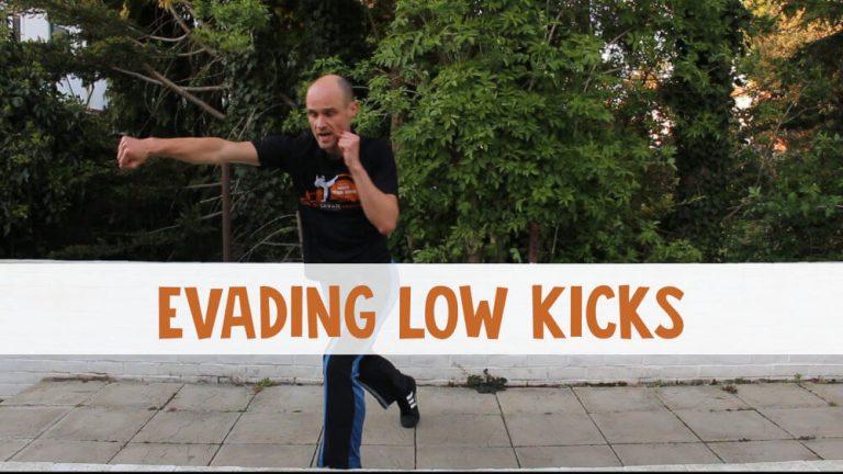 Evading Low Kicks